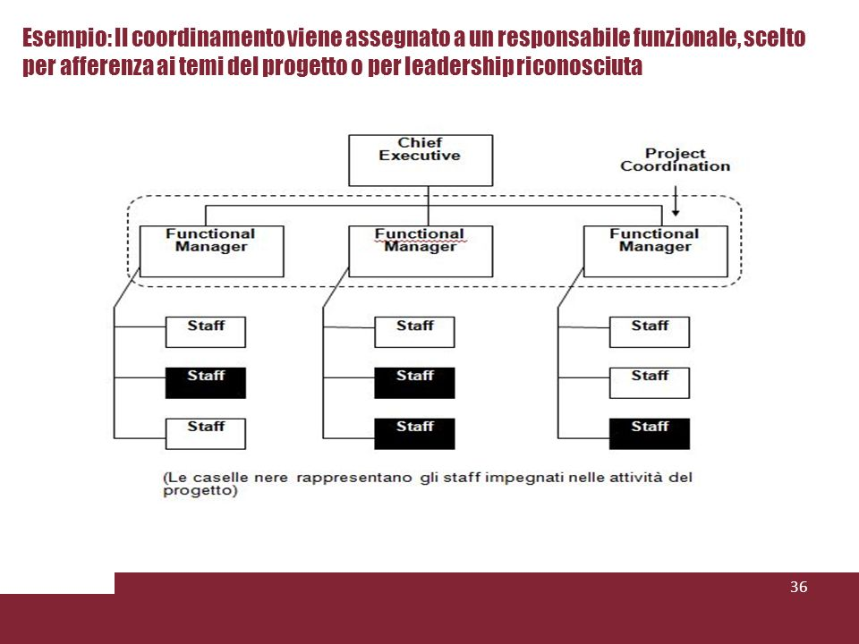 Esempio: Il coordinamento viene assegnato a un responsabile funzionale, scelto per afferenza ai temi del progetto o per leadership riconosciuta