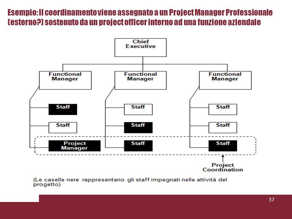 Esempio: Il coordinamento viene assegnato a un Project Manager Professionale (esterno ) sostenuto da un project officer interno ad una funzione aziendale