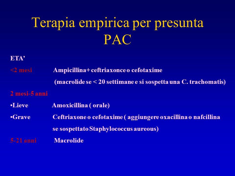 Terapia empirica per presunta PAC