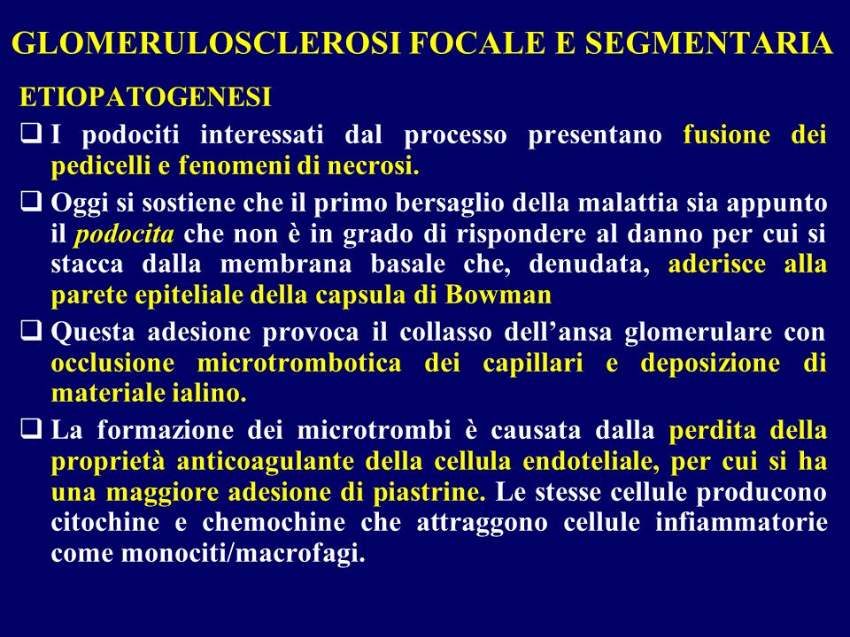 GLOMERULOSCLEROSI FOCALE E SEGMENTARIA
