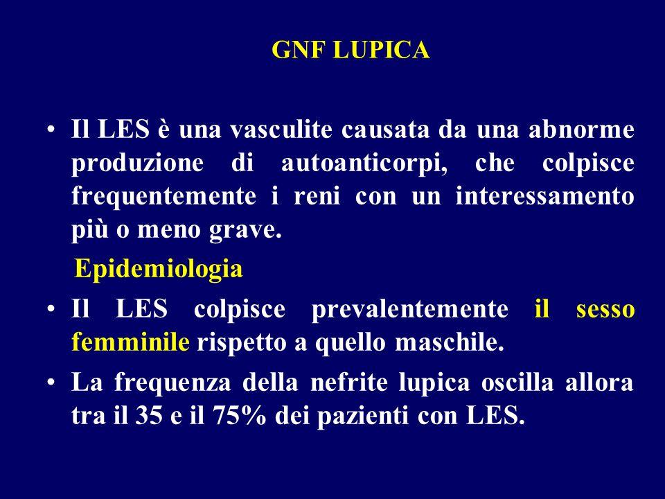 GNF LUPICA