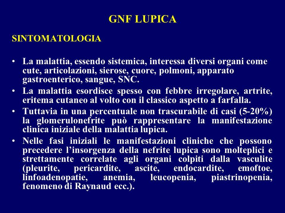 GNF LUPICA SINTOMATOLOGIA