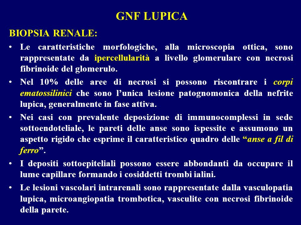 GNF LUPICA BIOPSIA RENALE: