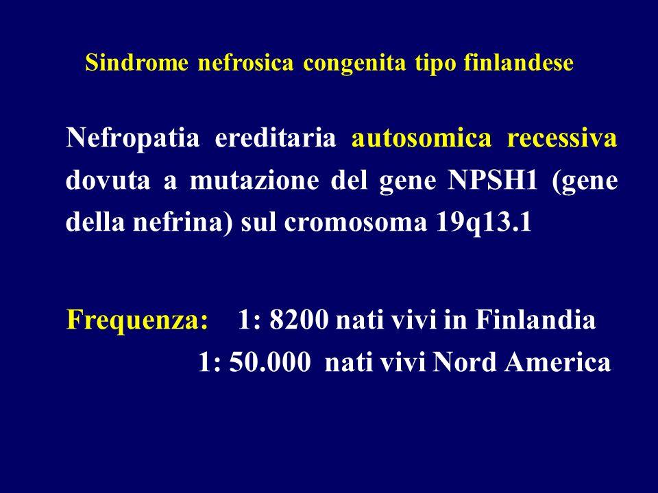 Sindrome nefrosica congenita tipo finlandese