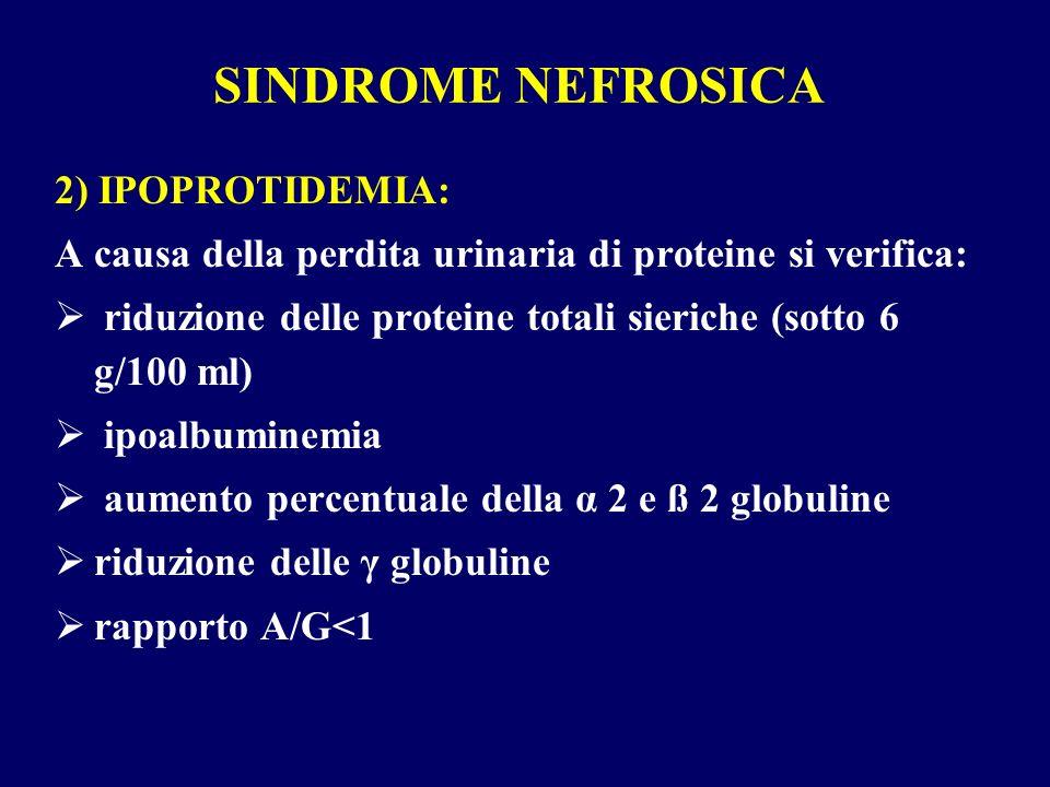 SINDROME NEFROSICA 2) IPOPROTIDEMIA: