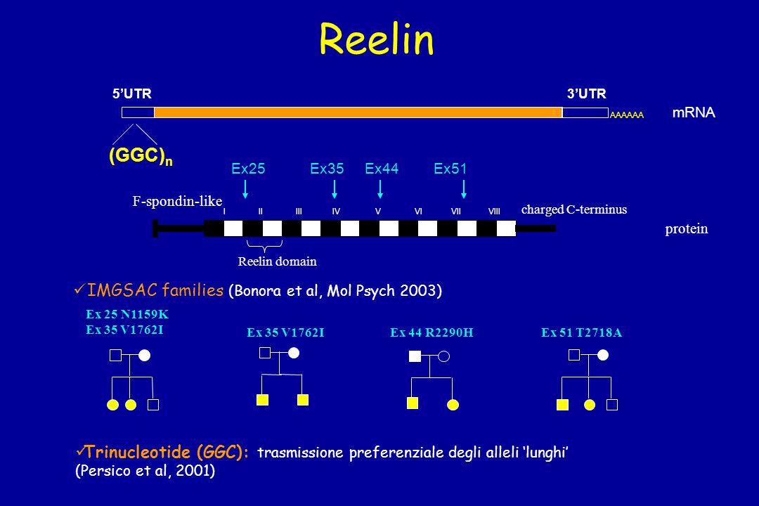Reelin (GGC)n IMGSAC families (Bonora et al, Mol Psych 2003)