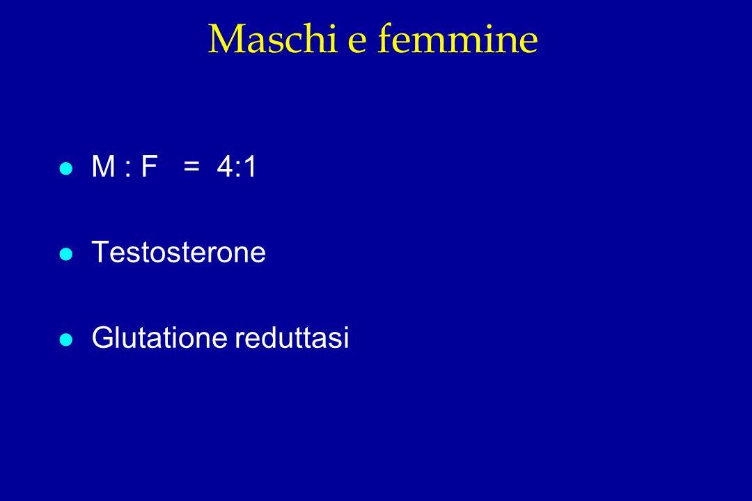 Maschi e femmine M : F = 4:1 Testosterone Glutatione reduttasi
