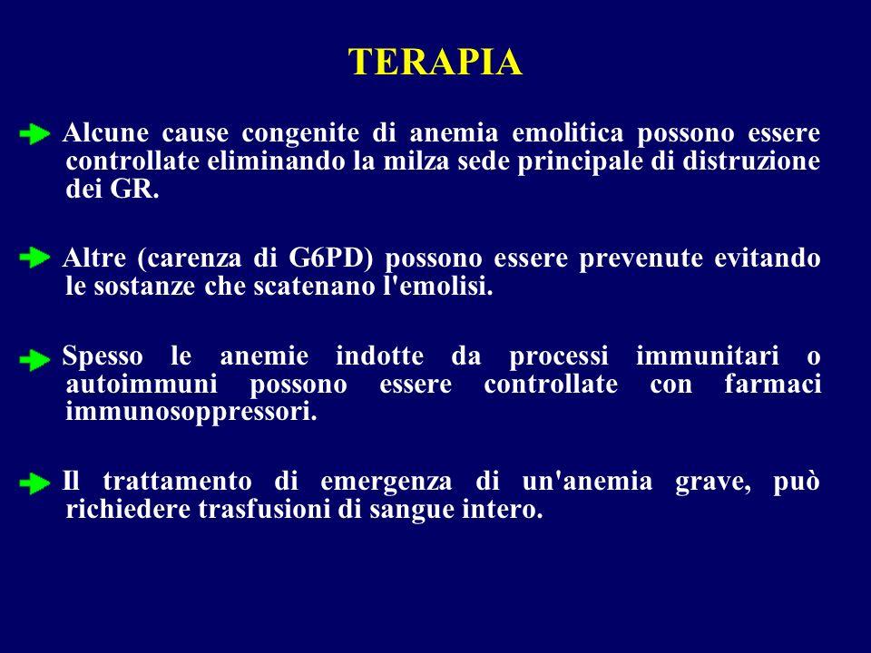 TERAPIA Alcune cause congenite di anemia emolitica possono essere controllate eliminando la milza sede principale di distruzione dei GR.