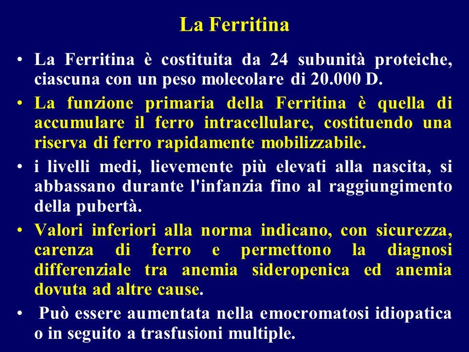 La Ferritina La Ferritina è costituita da 24 subunità proteiche, ciascuna con un peso molecolare di 20.000 D.
