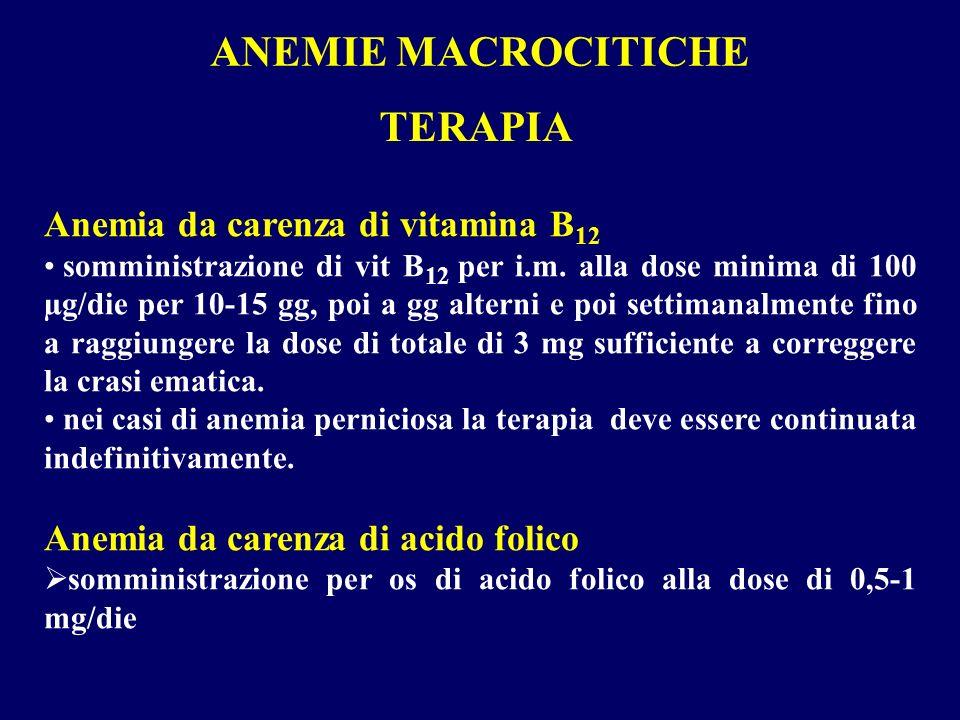 ANEMIE MACROCITICHE TERAPIA