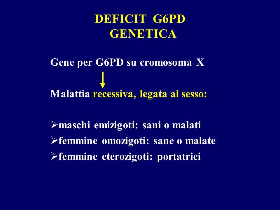 DEFICIT G6PD GENETICA Gene per G6PD su cromosoma X