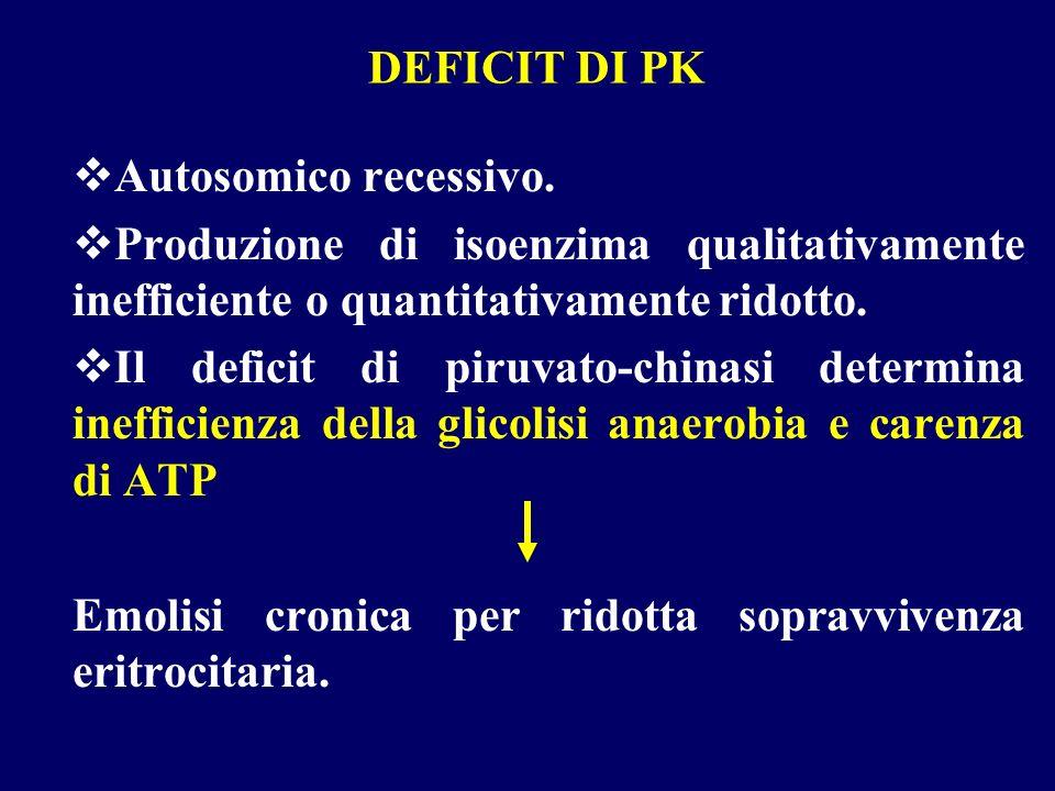 DEFICIT DI PK Autosomico recessivo. Produzione di isoenzima qualitativamente inefficiente o quantitativamente ridotto.