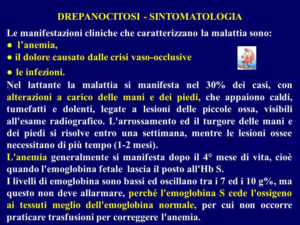 DREPANOCITOSI - SINTOMATOLOGIA