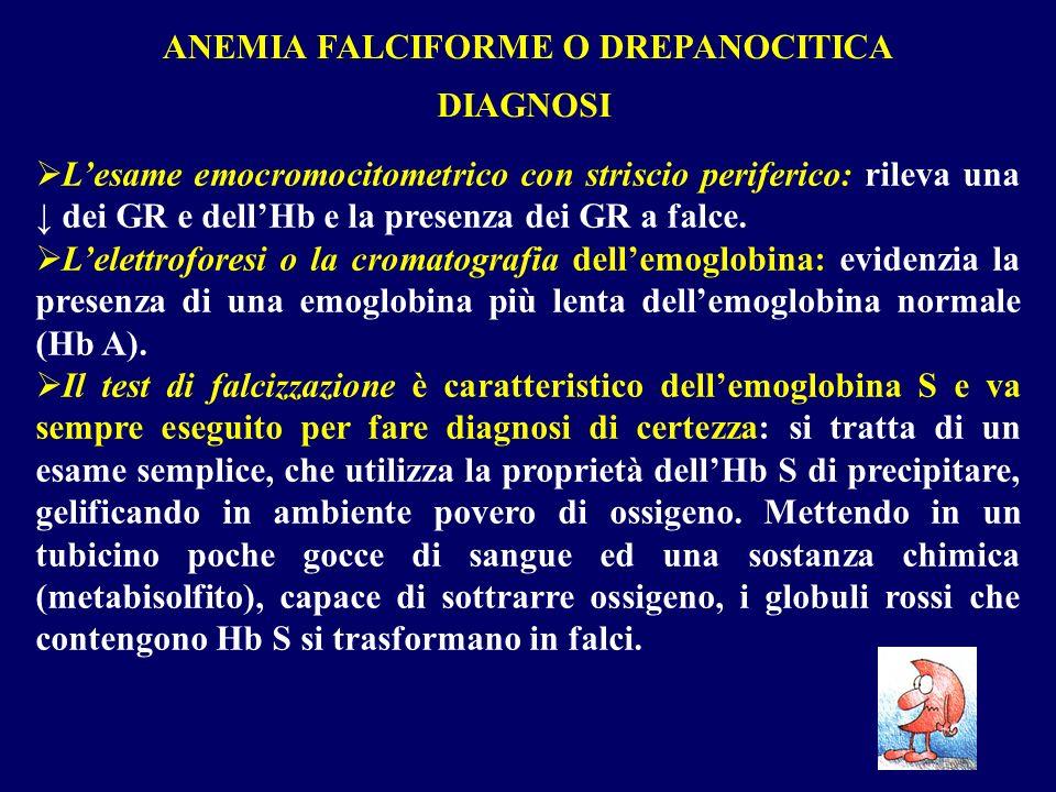 ANEMIA FALCIFORME O DREPANOCITICA
