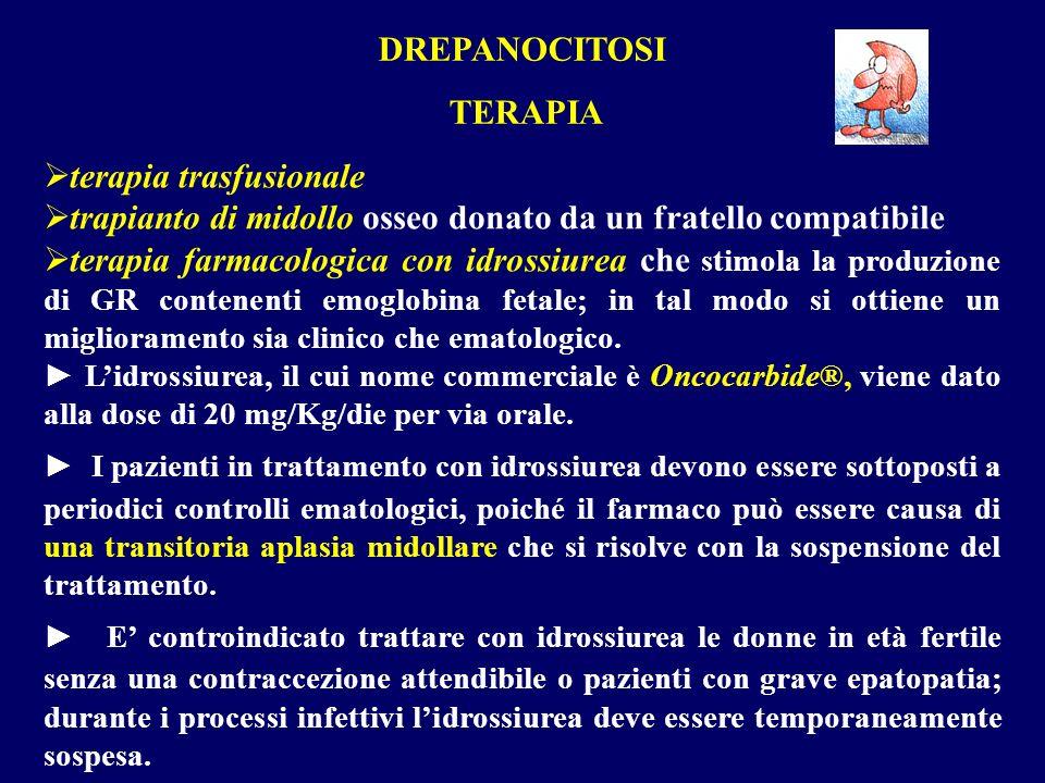 DREPANOCITOSI TERAPIA