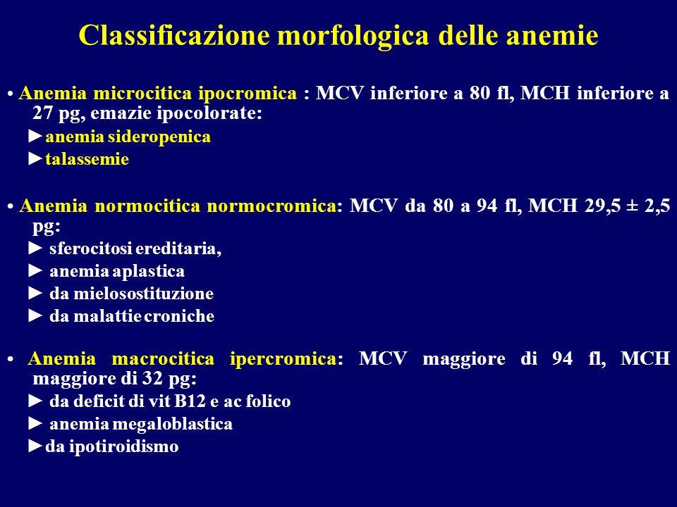 Classificazione morfologica delle anemie