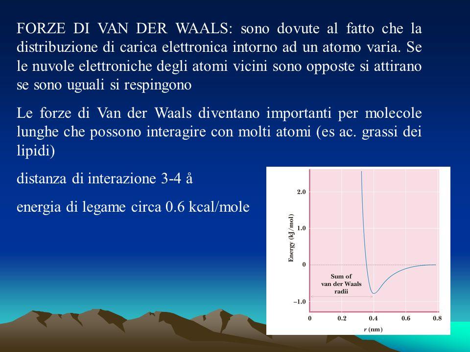 FORZE DI VAN DER WAALS: sono dovute al fatto che la distribuzione di carica elettronica intorno ad un atomo varia. Se le nuvole elettroniche degli atomi vicini sono opposte si attirano se sono uguali si respingono