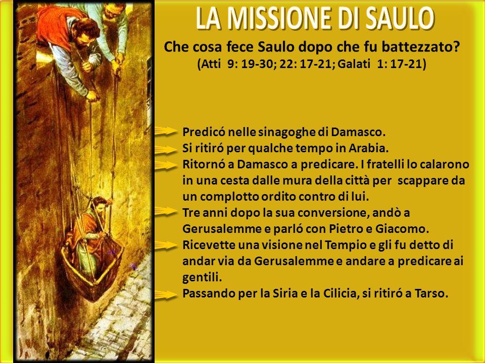 LA MISSIONE DI SAULO Che cosa fece Saulo dopo che fu battezzato (Atti 9: 19-30; 22: 17-21; Galati 1: 17-21)