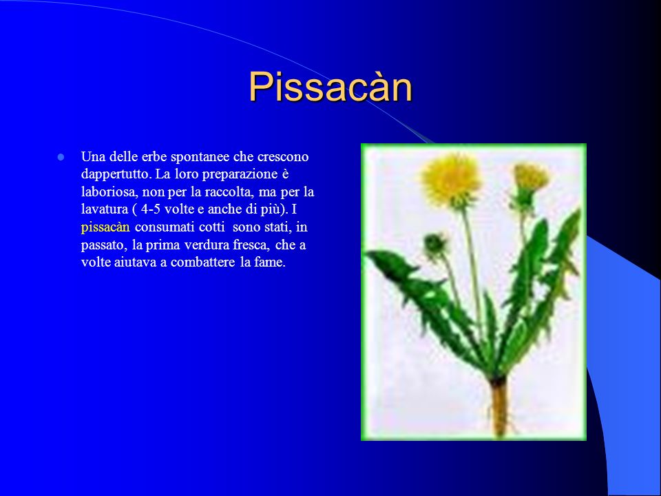 Pissacàn