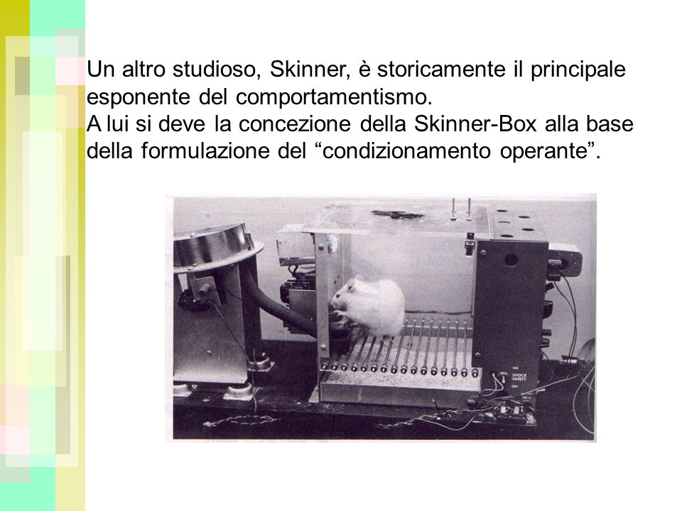 Un altro studioso, Skinner, è storicamente il principale esponente del comportamentismo.