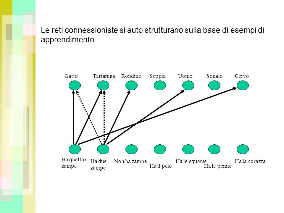 Le reti connessioniste si auto strutturano sulla base di esempi di apprendimento