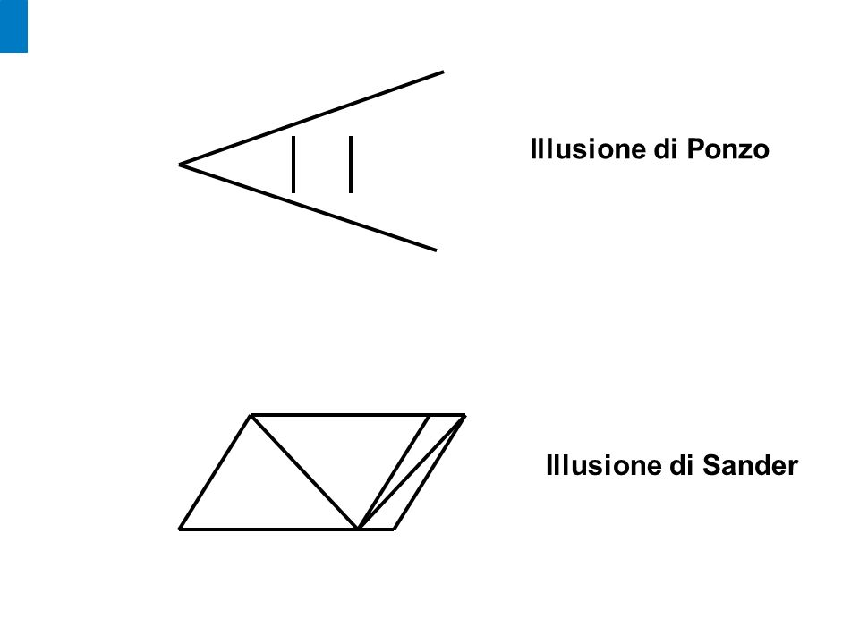 Illusione di Ponzo Illusione di Sander