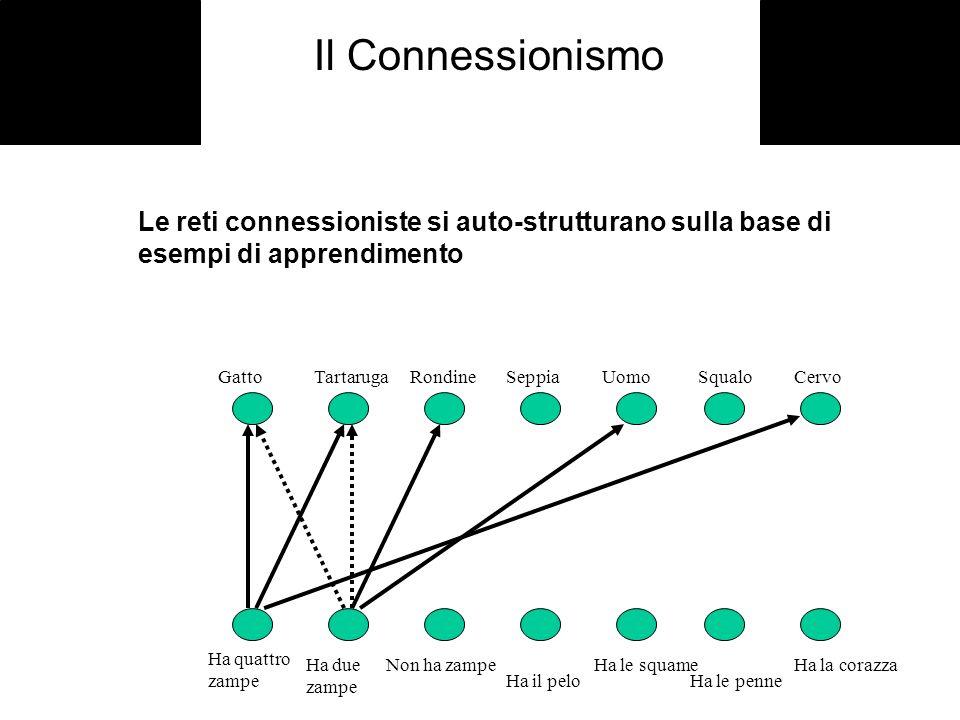 Il ConnessionismoLe reti connessioniste si auto-strutturano sulla base di esempi di apprendimento. Gatto Tartaruga Rondine Seppia Uomo Squalo Cervo.