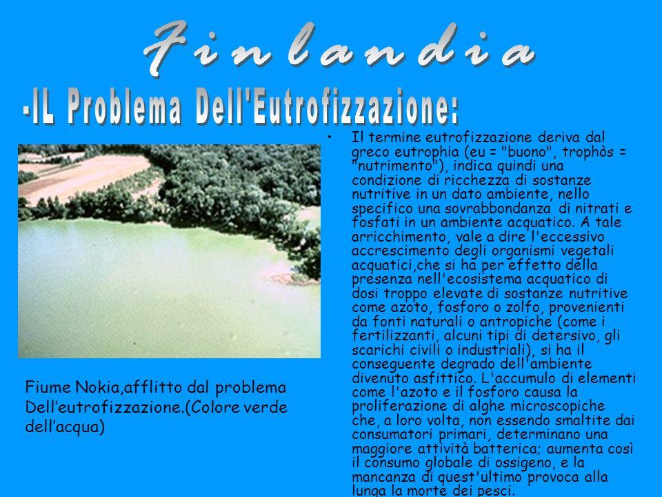 -IL Problema Dell Eutrofizzazione: