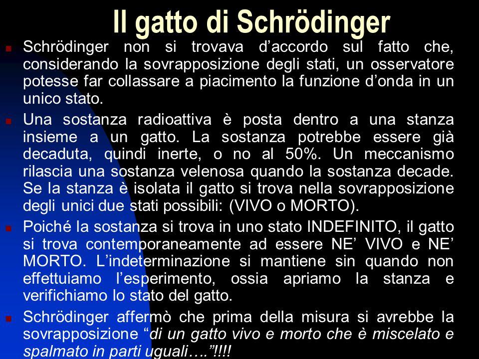 Il gatto di Schrödinger
