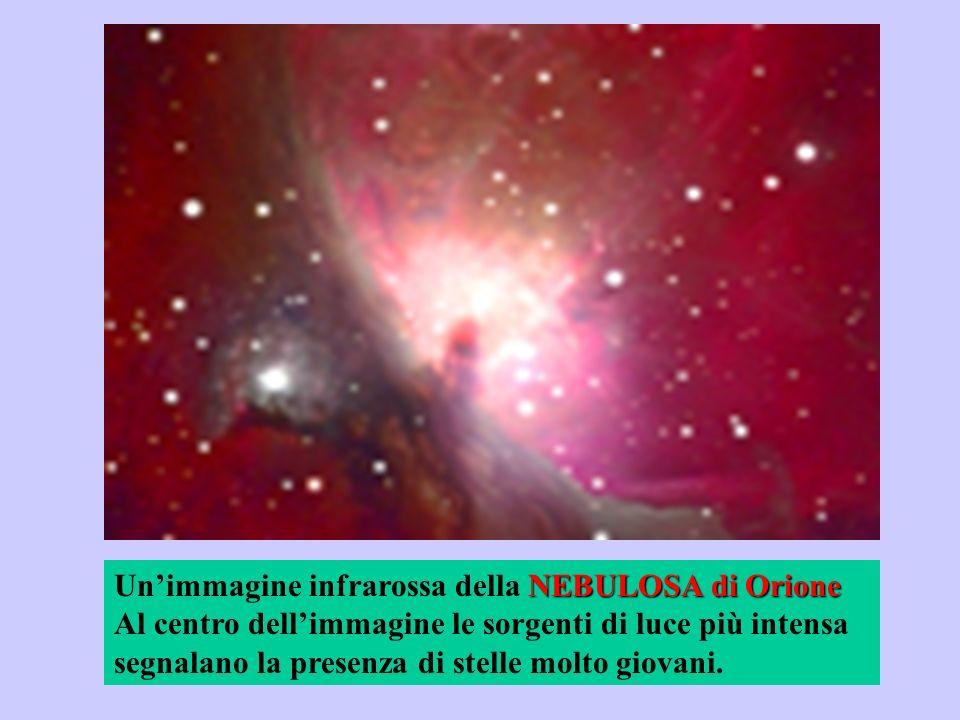 Un'immagine infrarossa della NEBULOSA di Orione Al centro dell'immagine le sorgenti di luce più intensa segnalano la presenza di stelle molto giovani.