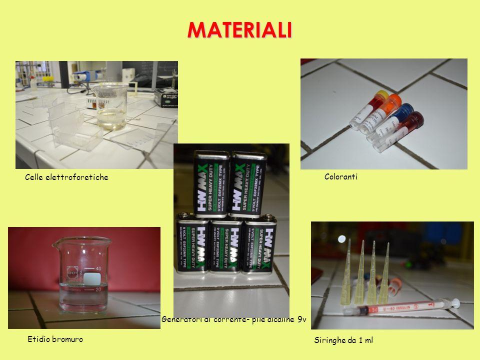 MATERIALI Celle elettroforetiche Coloranti