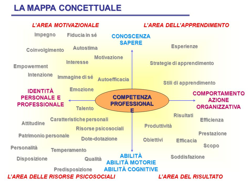 LA MAPPA CONCETTUALE L'AREA MOTIVAZIONALE L'AREA DELL'APPRENDIMENTO