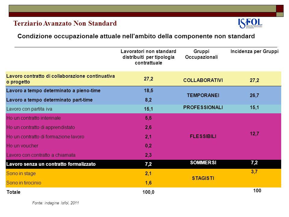 Lavoratori non standard distribuiti per tipologia contrattuale