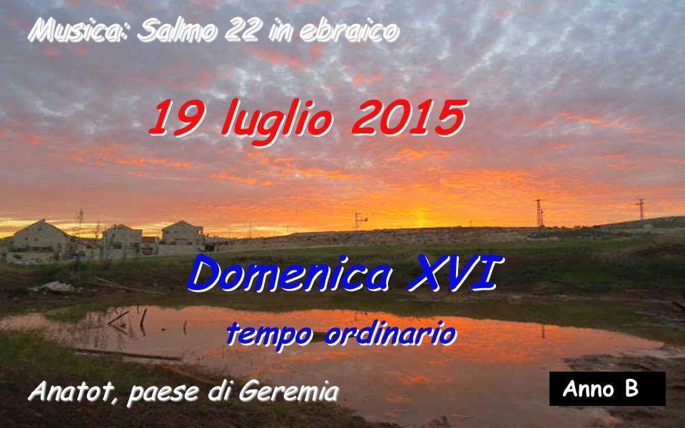 19 luglio 2015 Domenica XVI tempo ordinario