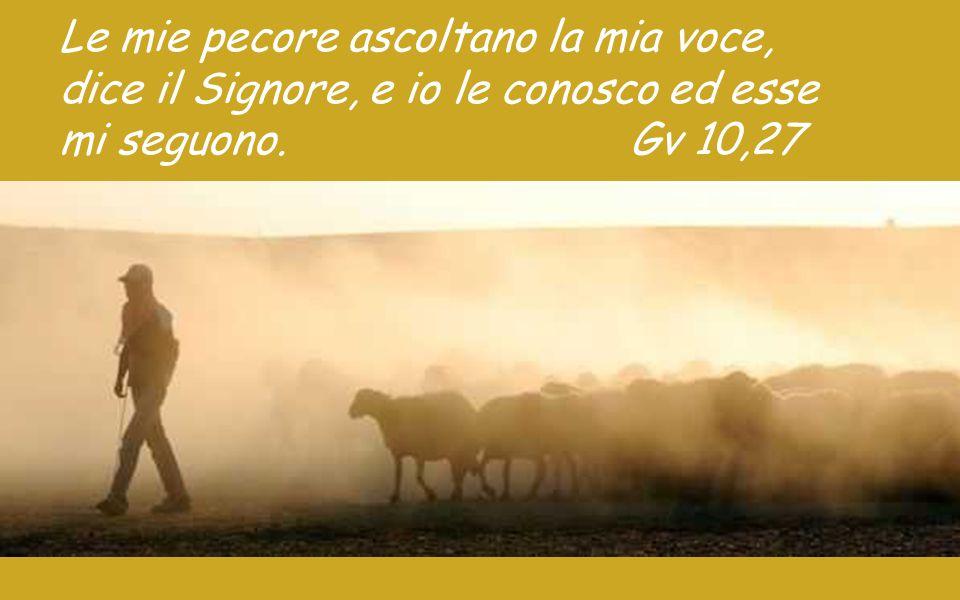 Le mie pecore ascoltano la mia voce,