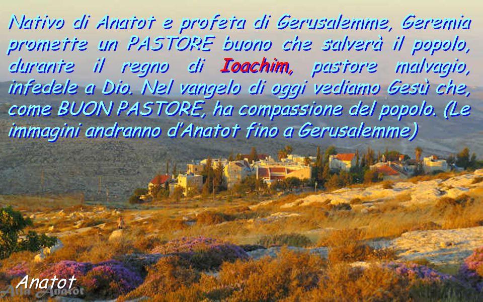 Nativo di Anatot e profeta di Gerusalemme, Geremia promette un PASTORE buono che salverà il popolo, durante il regno di Ioachim, pastore malvagio, infedele a Dio. Nel vangelo di oggi vediamo Gesù che, come BUON PASTORE, ha compassione del popolo. (Le immagini andranno d'Anatot fino a Gerusalemme)