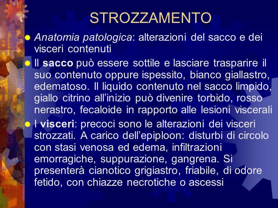 STROZZAMENTO Anatomia patologica: alterazioni del sacco e dei visceri contenuti.