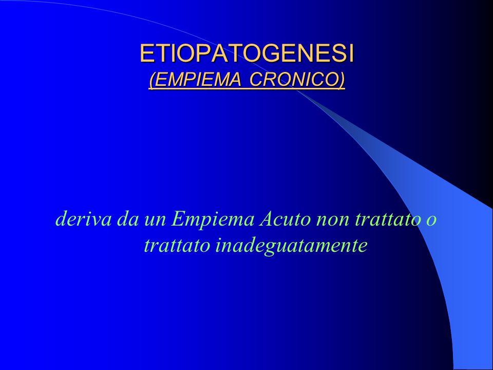 ETIOPATOGENESI (EMPIEMA CRONICO)