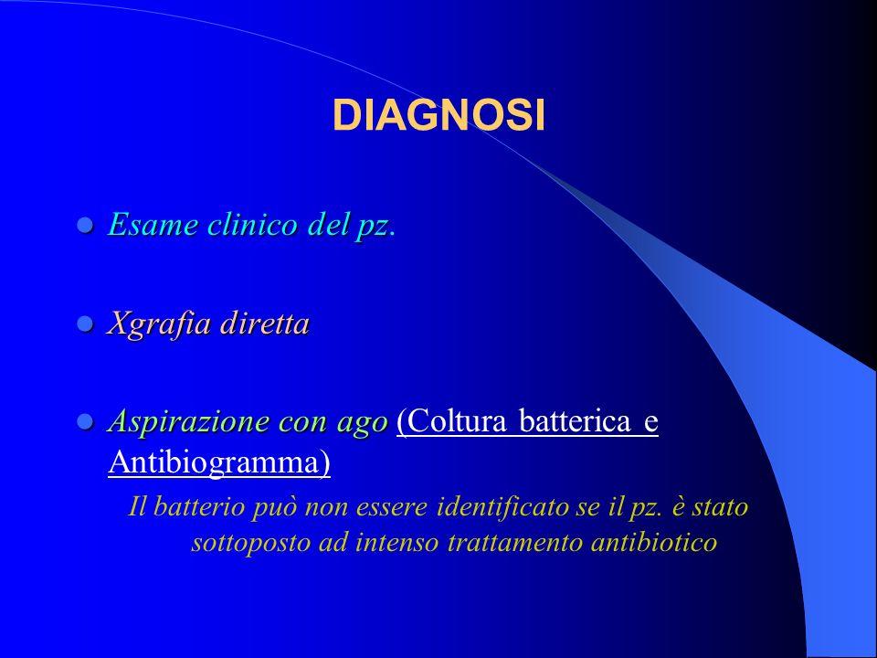 DIAGNOSI Esame clinico del pz. Xgrafia diretta