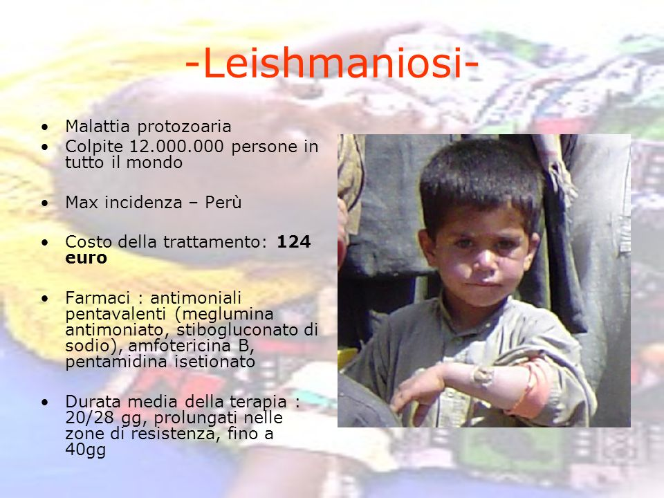 -Leishmaniosi- Malattia protozoaria
