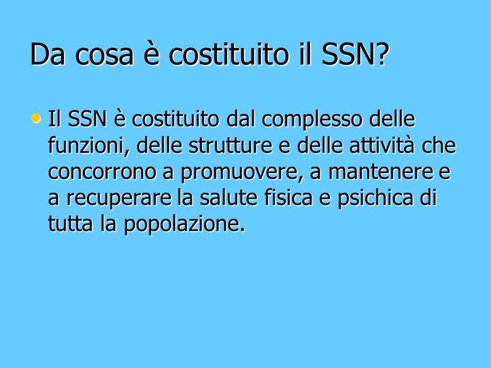 Da cosa è costituito il SSN