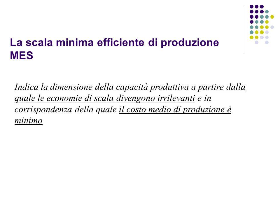 La scala minima efficiente di produzione MES