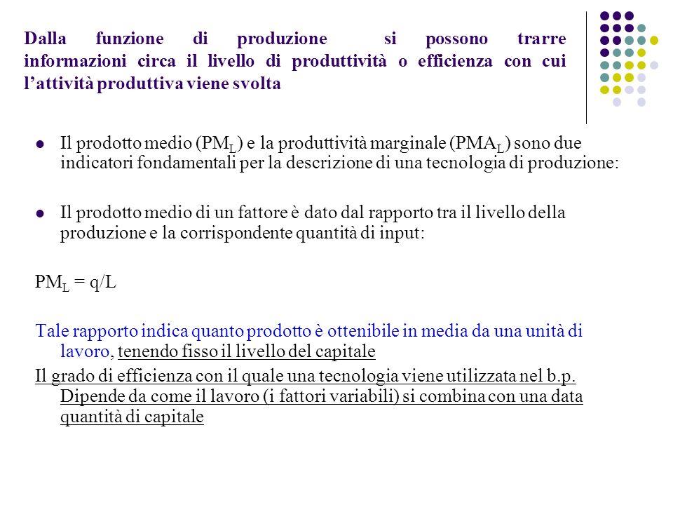 Dalla funzione di produzione si possono trarre informazioni circa il livello di produttività o efficienza con cui l'attività produttiva viene svolta