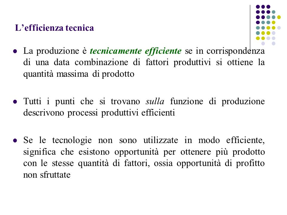 L'efficienza tecnica