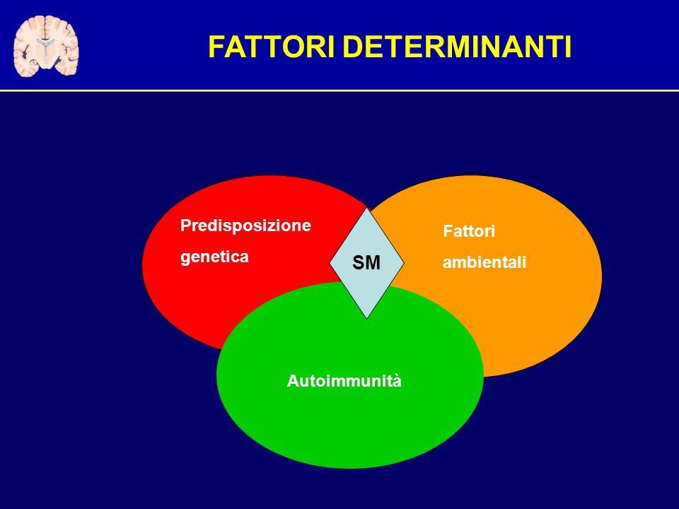 FATTORI DETERMINANTI SM Predisposizione Fattori genetica ambientali