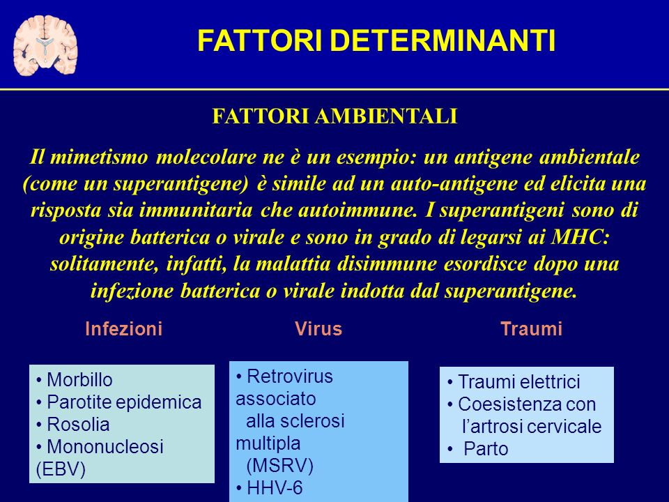 FATTORI DETERMINANTI FATTORI AMBIENTALI