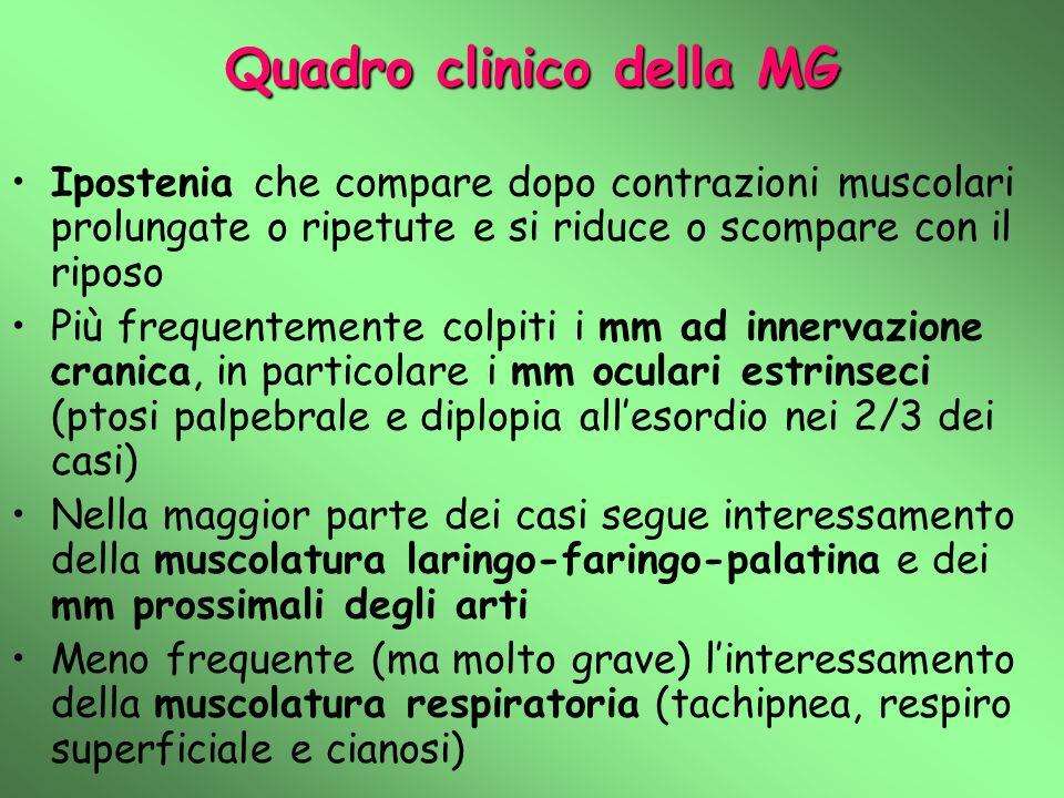 Quadro clinico della MG