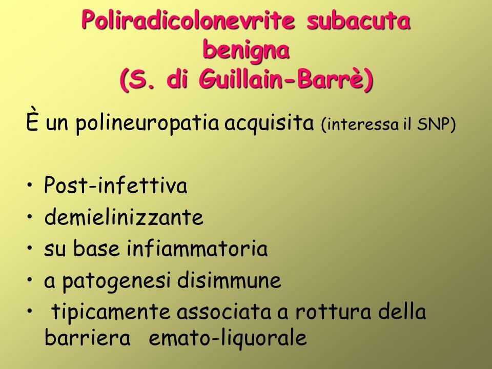 Poliradicolonevrite subacuta benigna (S. di Guillain-Barrè)