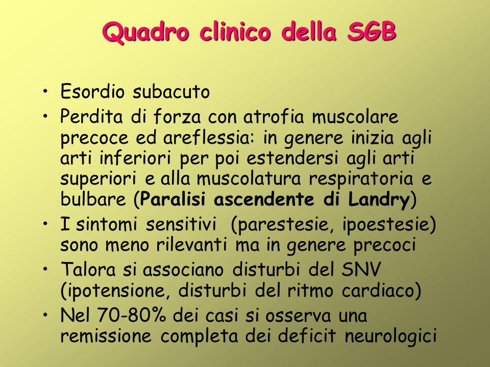Quadro clinico della SGB