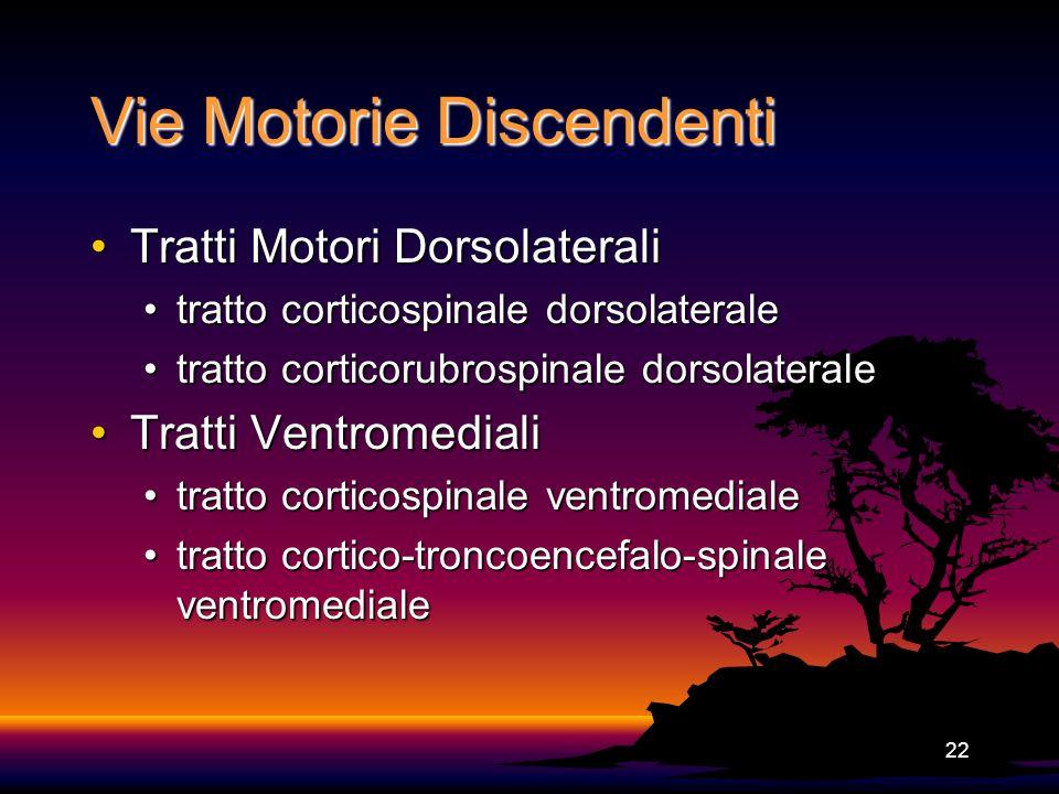 Vie Motorie Discendenti